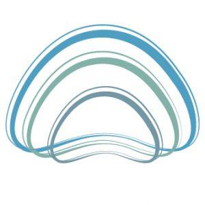 Fisioterapia sin dolor - logotipo - canal vertebral
